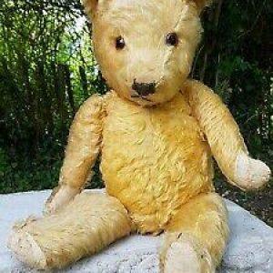 English Chiltern teddy